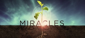Miracles-Series-Idea