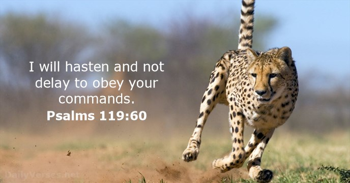 Don't Wait to Obey God