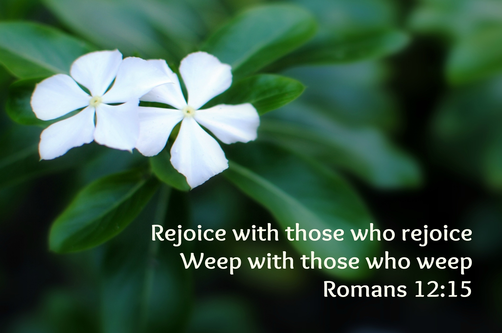 How to Rejoice in God's Goodness to Others