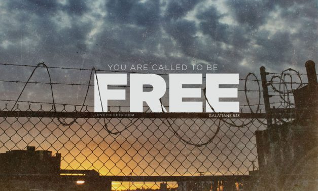 You Are Called to Be Free