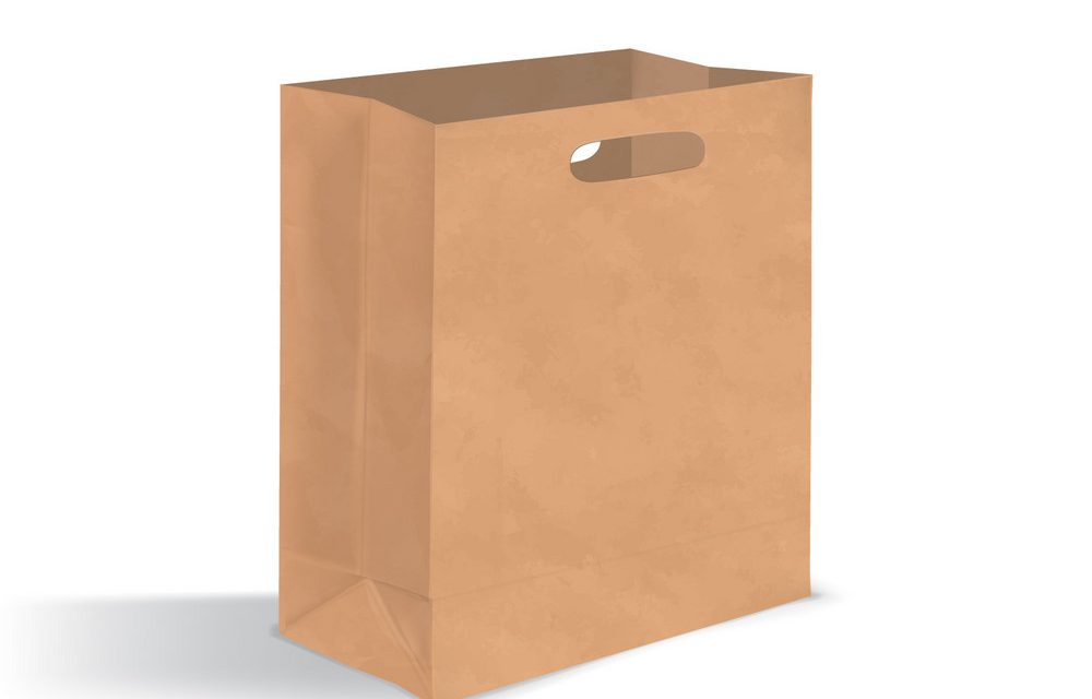 Empty Brown Bags