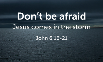 Don't Be Afraid to Fully Trust God